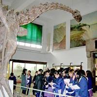 0 guia museo