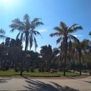 ¡Hermosa Plaza Irlanda!
