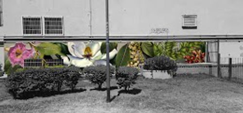 Opción Lapacho, Magnolia, Ombú, Araucaria